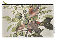 Ground Dove Carry-all Pouch by John James Audubon