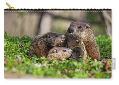 Happy Family Carry-all Pouch by Mircea Costina Photography