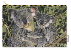Koala Phascolarctos Cinereus Mother Carry-all Pouch by Gerry Ellis