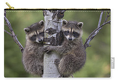 Raccoon Two Babies Climbing Tree North Carry-all Pouch by Tim Fitzharris