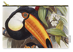 Toucan Carry-all Pouch by John Gould