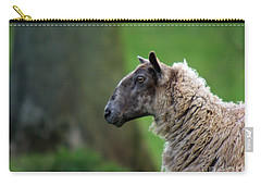 Baa Baa Carry-all Pouch by Angel  Tarantella