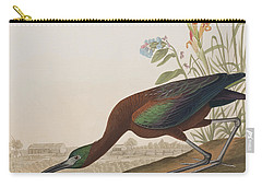 Glossy Ibis Carry-all Pouch by John James Audubon