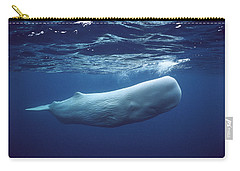 Sperm Whale Physeter Macrocephalus Carry-all Pouch by Hiroya Minakuchi