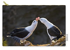 Black-browed Albatross Couple Carry-all Pouch by Jean-Louis Klein & Marie-Luce Hubert