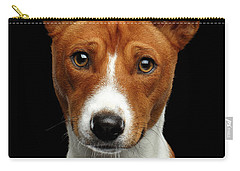 Pedigree White With Red Basenji Dog On Isolated Black Background Carry-all Pouch by Sergey Taran