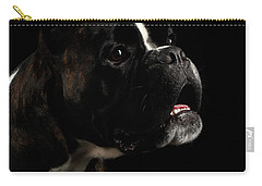 Purebred Boxer Dog Isolated On Black Background Carry-all Pouch by Sergey Taran