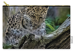 Amur Leopard Carry-all Pouch by Martin Newman