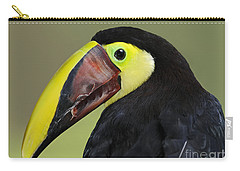 A Bird For His Bill.. Carry-all Pouch by Nina Stavlund