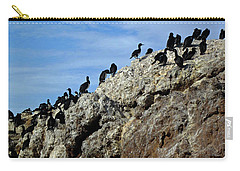 A Gulp Of Cormorants Carry-all Pouch by Sandy Taylor