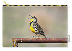 A Morning Song Carry-all Pouch by Michael Morse