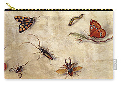 A Study Of Various Insects, Fruit And Animals Carry-all Pouch by Jan Van Kessel the Elder