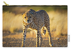 African Cheetah Carry-all Pouch by Inge Johnsson