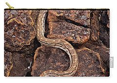 African Rock Python Carry-all Pouch by John Cancalosi