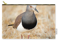 African Wattled Lapwing Vanellus Carry-all Pouch by Panoramic Images