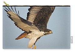 Augur Buzzard Buteo Augur Flying Carry-all Pouch by Panoramic Images