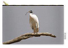 Australian White Ibis Perched Carry-all Pouch by Mike  Dawson