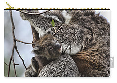 Baby Koala V2 Carry-all Pouch by Douglas Barnard