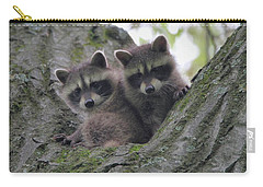 Baby Raccoons In A Tree Carry-all Pouch by Dan Sproul