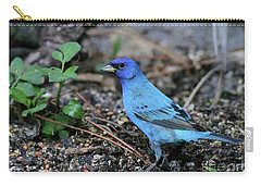 Beautiful Indigo Bunting Carry-all Pouch by Sabrina L Ryan