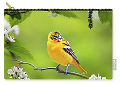 Bird And Blooms - Baltimore Oriole Carry-all Pouch by Christina Rollo