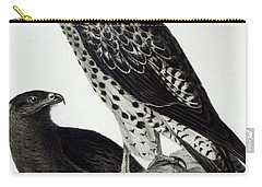 Birds Of Prey Carry-all Pouch by Charles Darwin