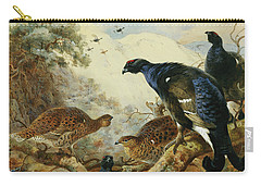 Blackgame Or Black Grouse Carry-all Pouch by Archibald Thorburn