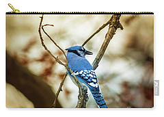 Blue Jay Carry-all Pouch by Robert Frederick