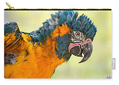 Blue Throated Macaw Carry-all Pouch by Jamie Pham