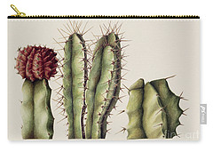 Cacti Carry-all Pouch by Annabel Barrett