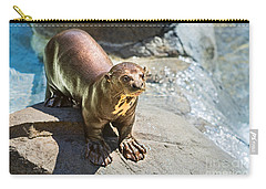 Catching Some Sun Carry-all Pouch by Jamie Pham