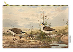 Cayley Masked Lapwing. Vanellus Miles Carry-all Pouch by Neville Henry Penniston