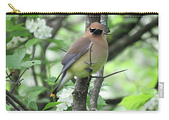 Cedar Wax Wing Carry-all Pouch by Alison Gimpel