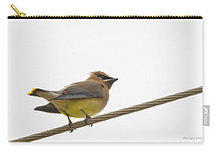 Cedar Wax Wing Carry-all Pouch by Chris Reecer