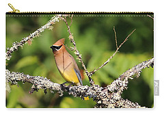 Cedar Waxwing  Carry-all Pouch by Carol R Montoya