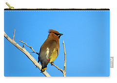 Cedar Waxwing Carry-all Pouch by Dianne Cowen