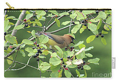 Cedar Waxwing Eating Berries Carry-all Pouch by Maili Page
