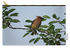 Cedar Waxwing Profile Carry-all Pouch by Mark A Brown