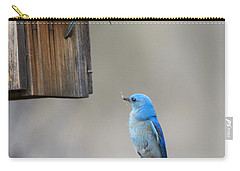 Checking The Nest Carry-all Pouch by Mike Dawson