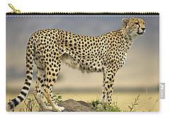 Cheetah Acinonyx Jubatus On Termite Carry-all Pouch by Winfried Wisniewski