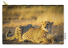 Cheetah Portrait Carry-all Pouch by Inge Johnsson