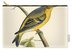 Citril Finch Carry-all Pouch by English School