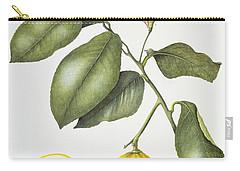 Citrus Bergamot Carry-all Pouch by Margaret Ann Eden