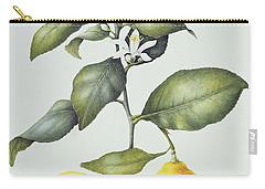 Citrus Lemon Carry-all Pouch by Margaret Ann Eden