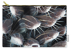 Close-up View Of A Group Of Catfish Carry-all Pouch by Beverly Factor