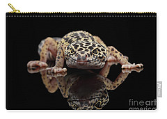 Closeup Leopard Gecko Eublepharis Macularius Isolated On Black Background, Front View Carry-all Pouch by Sergey Taran