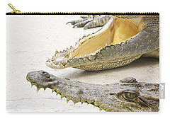 Crocodile Choir Carry-all Pouch by Jorgo Photography - Wall Art Gallery