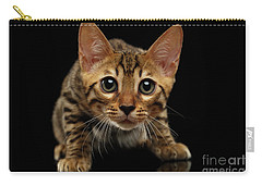 Crouching Bengal Kitty On Black  Carry-all Pouch by Sergey Taran
