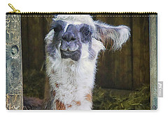 Curious Carry-all Pouch by Jutta Maria Pusl