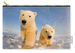 Curious Two Carry-all Pouch by Steven Kazlowski